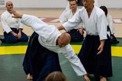 Osawa sensei demonstrates with uke Steve Erickson